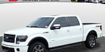 USED 2014 FORD F-150 FX4 in FERNDALE, MICHIGAN