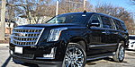 NEW 2019 CADILLAC ESCALADE ESV PREMIUM in BARRINGTON, ILLINOIS