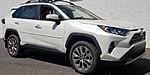NEW 2019 TOYOTA RAV4 LIMITED FWD in RAINBOW CITY, ALABAMA