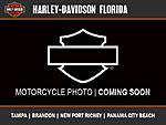 NEW 2017 HARLEY-DAVIDSON FLHTK ELECTRA GLIDE ULTRA LIMITED  in TAMPA, FLORIDA (Photo 17)