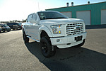 NEW 2015 FORD F-150 4X4 SUPERCREW 145 in WAYCROSS, GEORGIA (Photo 19)