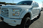 NEW 2015 FORD F-150 4X4 SUPERCREW 145 in WAYCROSS, GEORGIA (Photo 8)