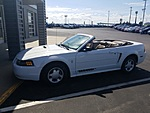 USED 2001 FORD MUSTANG PREMIUM in OSSEO, WISCONSIN (Photo 11)